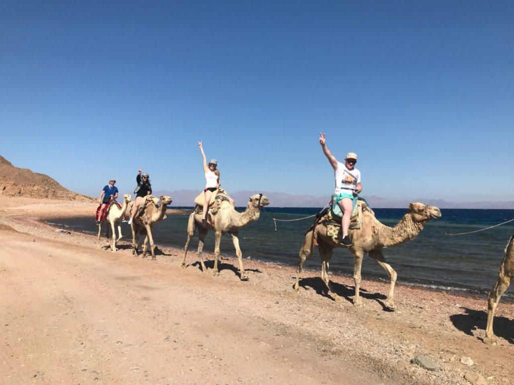 Экспедицию на верблюдах