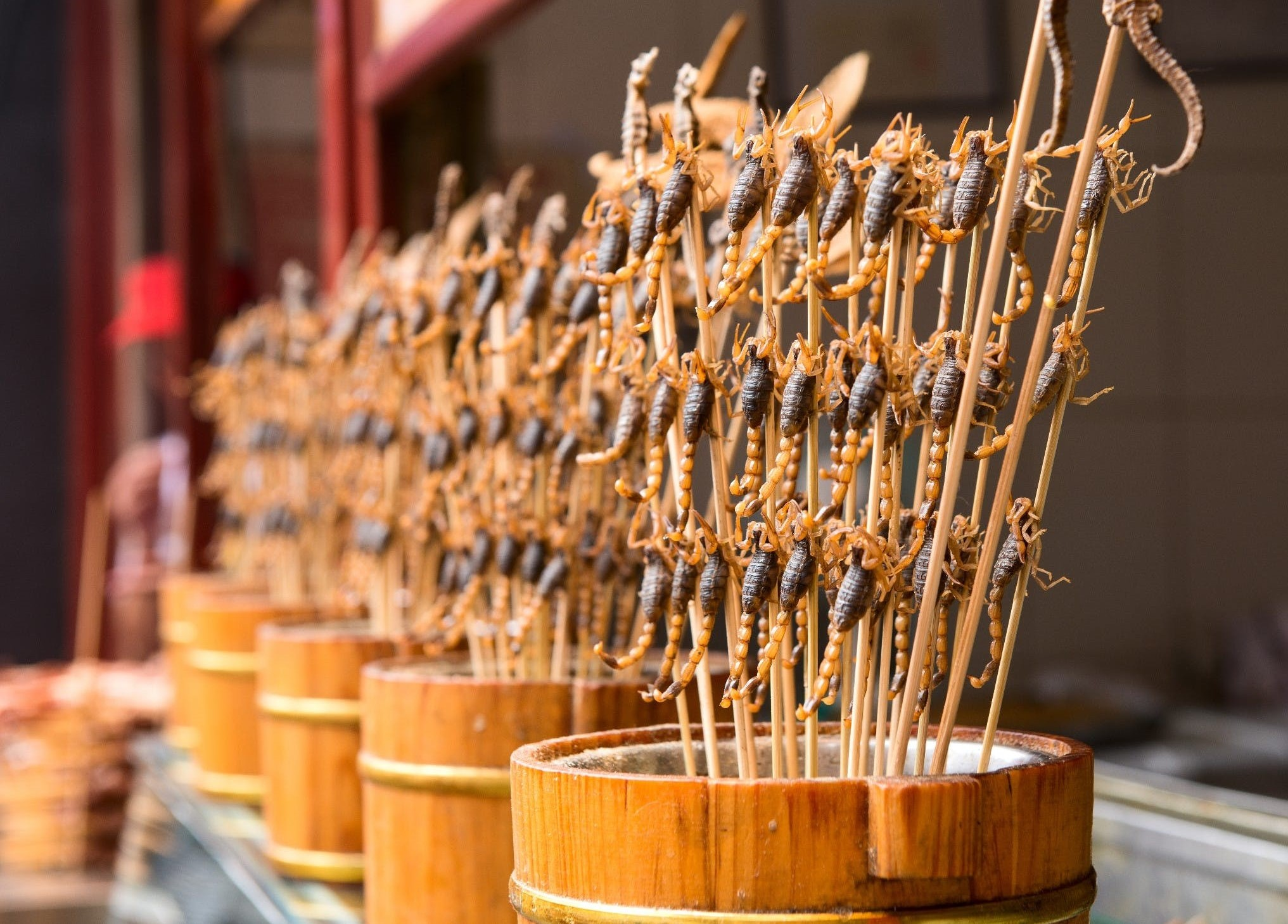 Китайская кухня - Хрустящие скорпионы на палочке