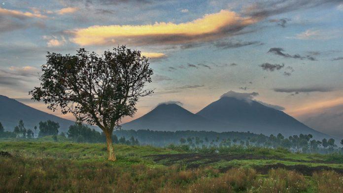 Вулканический национальный парк Руанды