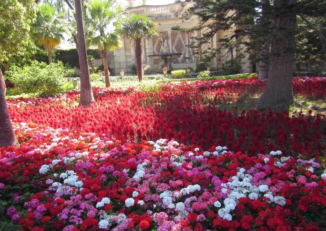 Ботанический сад им. святого Антония