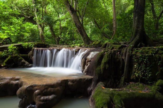 Национальный парк Than Bok Khorani