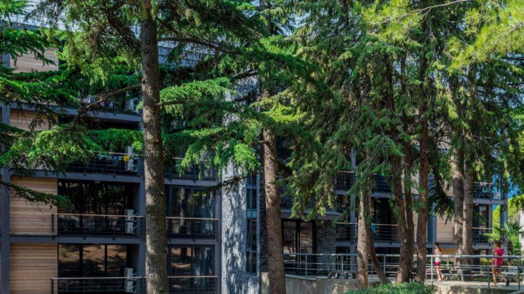 Отель «Green Park Hotel Yalta-Intourist»